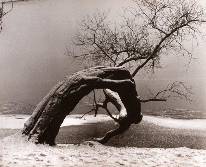 +2658 Jan Lauschmann, Bez názvu, 1934.jpg