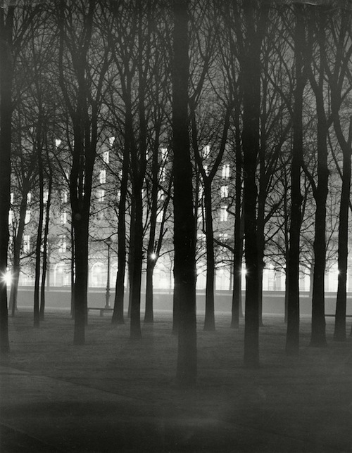 +981 Herbert List, The Tuileries Garden, Paris 1938.jpg