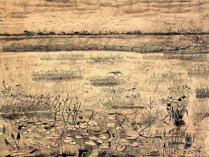 595 Vincent van Gogh, Marsh with Water Lillies,1881.jpg