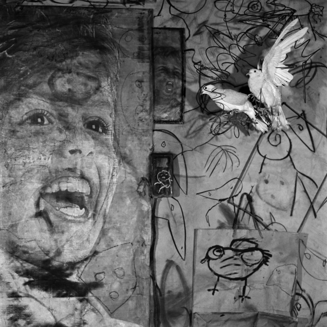+1086 Roger Ballen From the Asylum series  2009.jpg