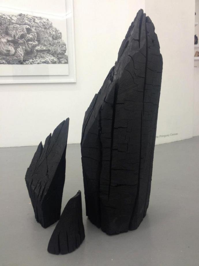 +1017 Charlotte Pringuey-Cessac charbon de bois  2012.jpg