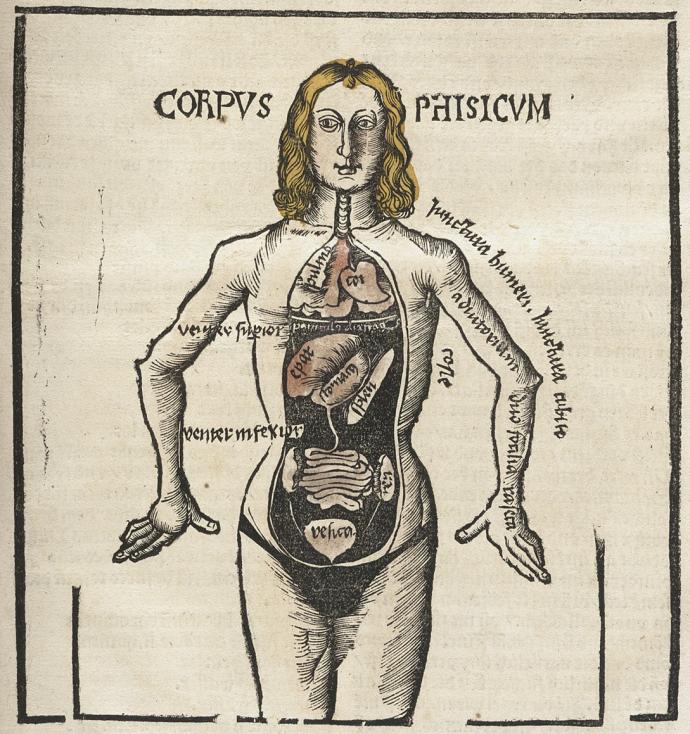 +6Hieronymus Brunschwig, Liber de Arte Distillandi, 1500.jpg