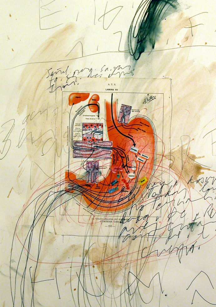 +6Pablo Orza human anatomy automatic notebook (2008).jpg