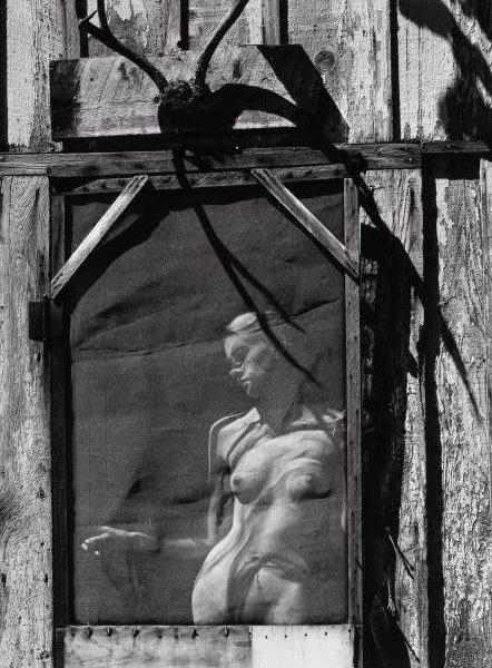 +37Wynn Bullock, Lucia, 1956.jpg